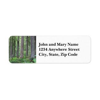 Etiqueta de endereço do remetente verde da foto da