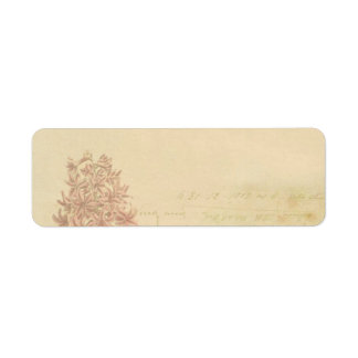 etiqueta de endereço floral do papel de parede do