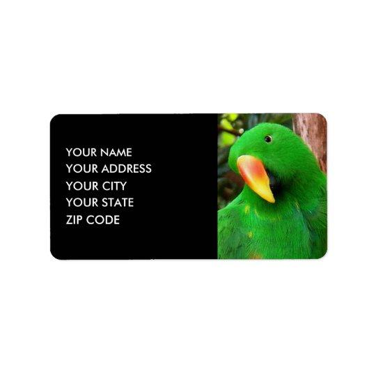 """Etiqueta De Endereço """"Papagaio de Eclectus do orador verde"""""""
