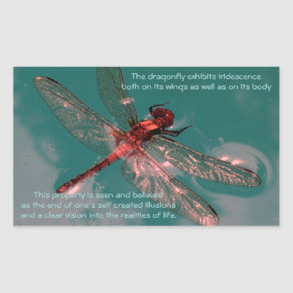 Etiqueta de incandescência da libélula adesivo retangular