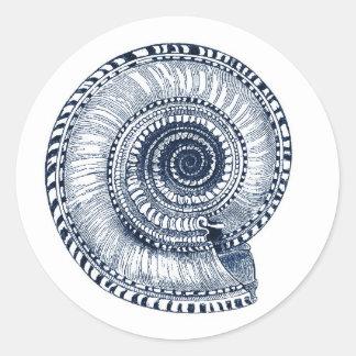 Etiqueta de Shell do mar dos azuis marinhos