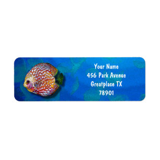 Etiqueta Desenho exótico colorido psicadélico dos peixes do