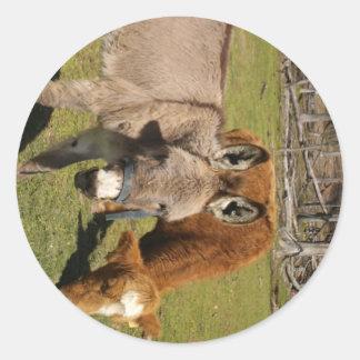 Etiqueta do asno e da vaca adesivos em formato redondos