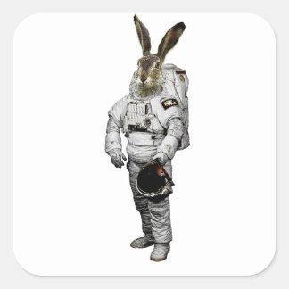 Etiqueta do astronauta de Hase