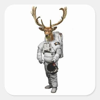 Etiqueta do astronauta de Hirsch