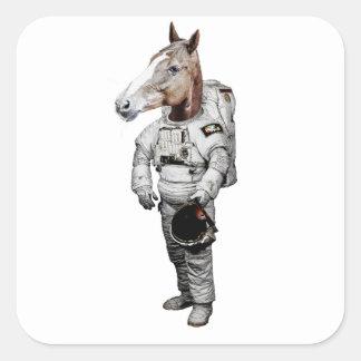 Etiqueta do astronauta de Pferd