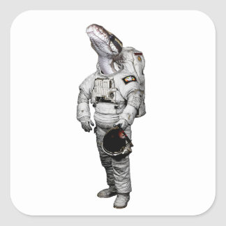 Etiqueta do astronauta de Schlange