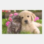 Etiqueta do cão & do gatinho de filhote de cachorr adesivo retangular