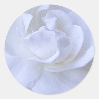 Etiqueta do casamento do rosa branco adesivo