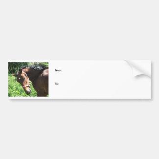 etiqueta do cavalo adesivos