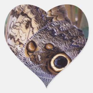 Etiqueta do coração da asa da borboleta