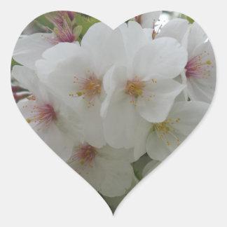 Etiqueta do coração da flor branca