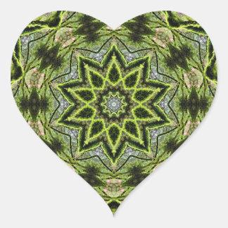 Etiqueta do coração do caleidoscópio da estrela da