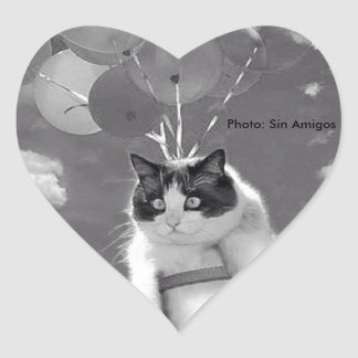 Etiqueta do coração: Vôo engraçado do gato com