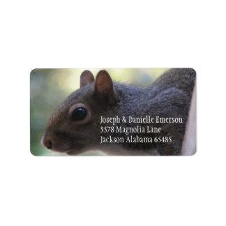 Etiqueta do endereço do esquilo