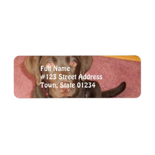 Etiqueta do enviamento do filhote de cachorro de etiqueta endereço de retorno