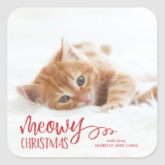 Etiqueta do feriado do animal de estimação do gato