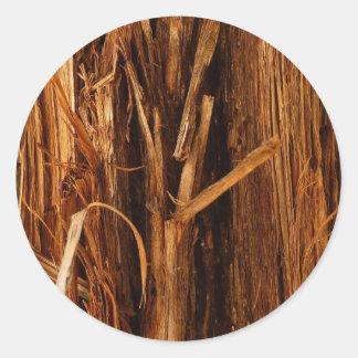 Etiqueta do latido do cedro adesivo redondo