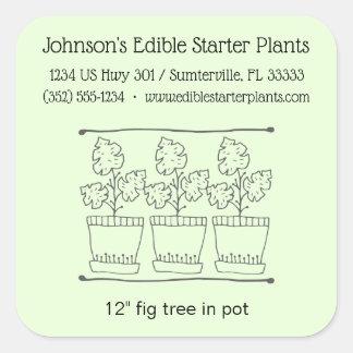 Etiqueta do produto do negócio da planta e do