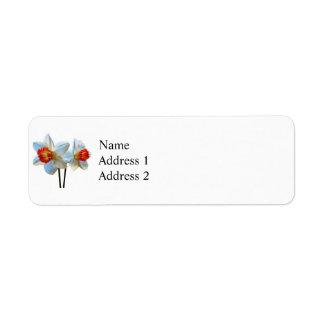 Etiqueta Dois brancos e Daffodils alaranjados