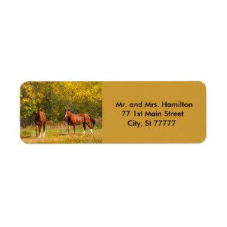 Etiqueta Dois cavalos da castanha do outono