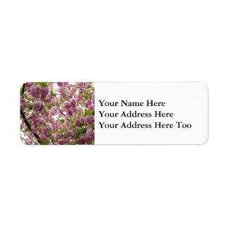 Etiqueta Dossel II da flor de cerejeira