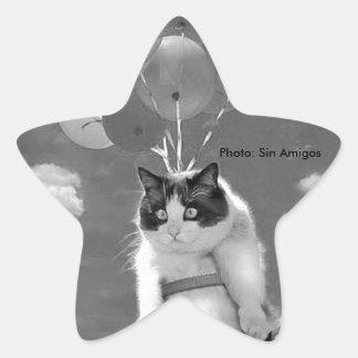 etiqueta Estrela-dada forma: Vôo engraçado do gato Adesito Estrela