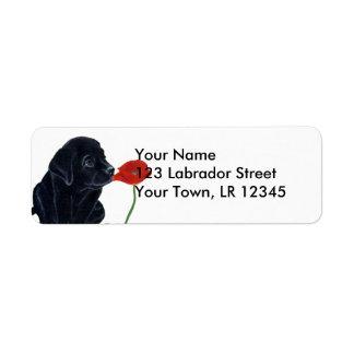 Etiqueta Filhote de cachorro e papoila pretos de Labrador