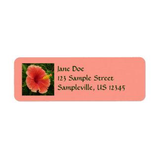 Etiqueta Flor alaranjada do hibiscus