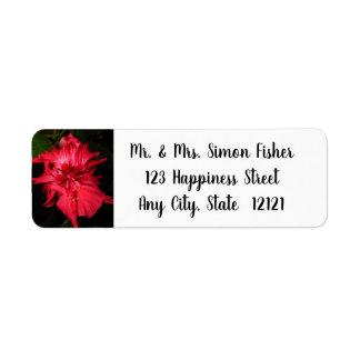 Etiqueta Flor vermelha do hibiscus