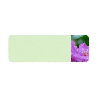 Etiqueta Flor violeta