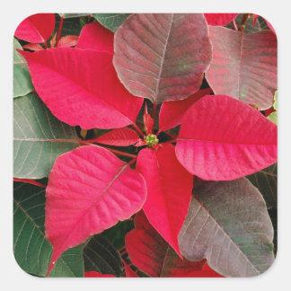Etiqueta floral do feriado vermelho