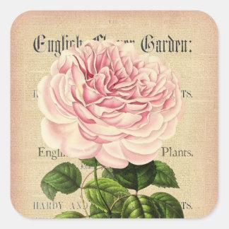 Etiqueta floral feminino do vintage cor-de-rosa da adesivo quadrado
