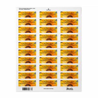 Etiqueta Fotografia do Fim-Acima da margarida molhada