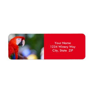 Etiqueta Fotografia vermelha do papagaio