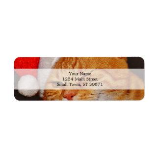 Etiqueta Gato alaranjado - gato de Papai Noel - Feliz Natal