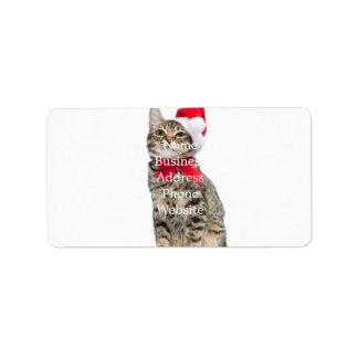 Etiqueta Gato do Natal - gato de Papai Noel - gatinho
