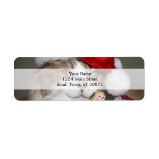 Etiqueta Gato do papai noel - gato do Natal - gatinhos