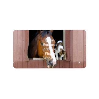 Etiqueta Gato e cavalo - rancho do cavalo - amantes do