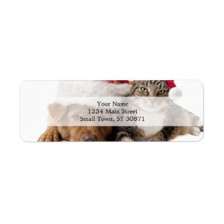 Etiqueta Gatos e cães - gato do Natal - cão do Natal