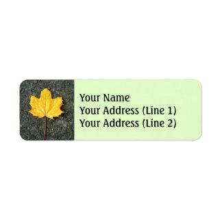 Etiqueta Grande folha amarela/alaranjada caída da árvore do