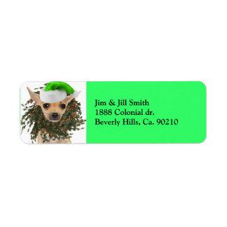 Etiqueta Grinalda & chapéu do Natal da chihuahua
