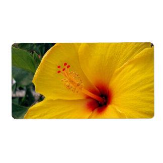Etiqueta Hibiscus amarelo