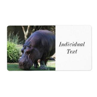 Etiqueta Hipopótamo AJ17