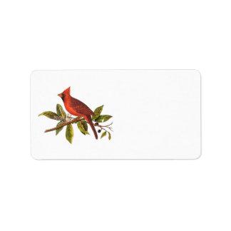 Etiqueta Ilustração cardinal do pássaro da canção do