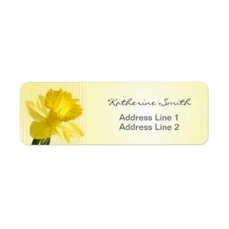 Etiqueta Imagem e listras amarelas do Daffodil do endereço