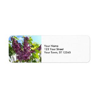 Etiqueta Lilacs de Oregon