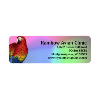 Etiqueta Macaw do arco-íris com fundo colorido