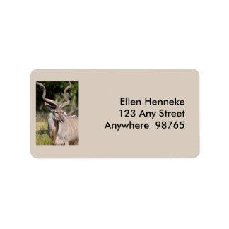 Etiqueta Maior Kudu
