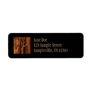 Etiqueta O cedro Textured o olhar de madeira do latido